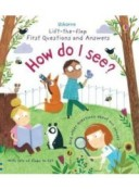 Lift-the-Flap First Questions & Answers How Do I See? Board book
