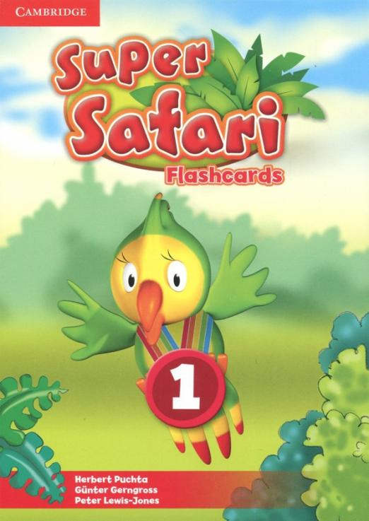Super Safari. Level 1. Flashcards (Pack of 40)