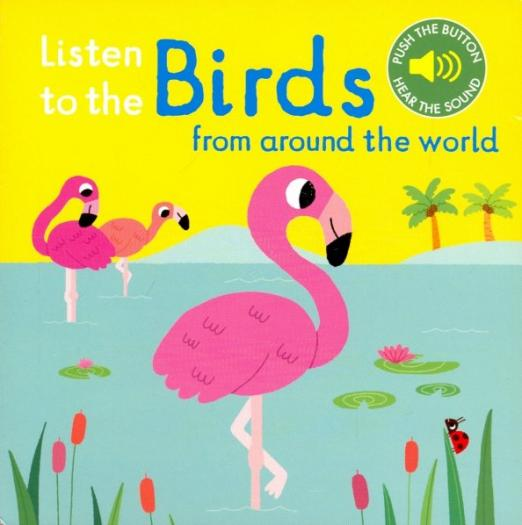 Listen to the Birds From Around the World (board book)